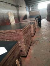 Plywood For Sale - HDO Film faced plywood