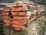Yumuşak Ahşap  Kesilmeyen Kereste Satılık - Kenarları Biçilmemiş Kereste – Flitch, Porsuk Ağacı