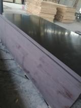 Birch / Poplar Construction Film Faced Plywood 21 mm