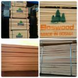 Hardwood Logs Suppliers and Buyers - 50 mm Beech  Veneer Logs from Bosnia - Herzegovina