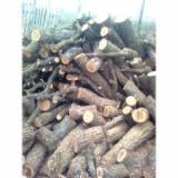 null - Oak  Firewood/Woodlogs Not Cleaved -- mm