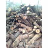 Firewood, Pellets And Residues For Sale - Oak Firewood/Woodlogs Not Cleaved -- mm