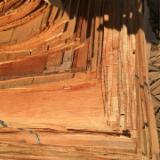 Commerce Bois Déroulés, Déroulage - Vend Déroulage Eucalyptus Déroulé