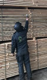 Looking for lumber Purchase manager in Latvia