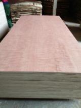 Plywood - Sapelli plywood