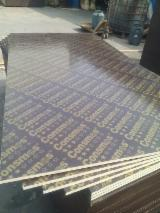 Wholesale  Film Faced Plywood Brown Film - CONSMOS 18MM FILM FACED PLYWOOD