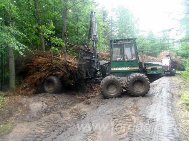 Forestry-equipment-forwarder-Lokomo-919