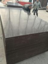 Wholesale  Film Faced Plywood Brown Film - 21mm Brown Film Faced Plywoods