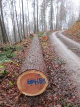 null - Vend Grumes De Sciage Douglas  NRW/Pfalz/Hessen/Bayern