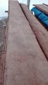 Nadelschnittholz, Besäumtes Holz Lärche Larix Spp. - Douglasie , Tanne , Nordmann-Tanne
