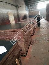Black Film Faced Construction Marine Plywood, 9-21 mm thick