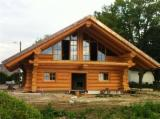 Wood Houses - Precut Timber Framing Spruce Picea Abies - Whitewood - Wooden Houses Spruce  - Whitewood 80-400 m2 (sqm) Romania