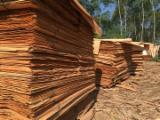 Tranchage à vendre - Vend Placage Naturel Eucalyptus Dosse
