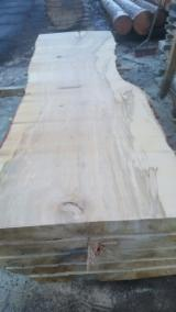 Hardwood  Unedged Timber - Flitches - Boules For Sale - MAPLE - SYCAMORE- Large Diameters