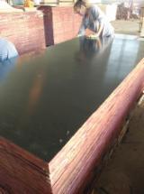 Phenolic Glue Film Faced Plywood 1220x2440mm Sizes