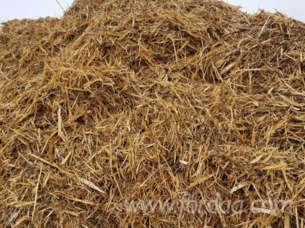 All-Species-Wood-Chips-From-Used