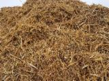 null - Fir , Spruce  - Whitewood, Pine  - Redwood Wood Chips From Used Wood