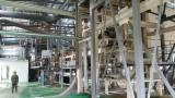 Gebraucht Shanghai 2012 Spanplatten-, Faserplatten-, OSB-Herstellung Zu Verkaufen China