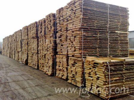 Pine----Scots-Pine-Loose-25-28-mm-from-Poland--Pomerania