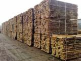 Softwood  Unedged Timber - Flitches - Boules - Pine  - Scots Pine Loose 25-28 mm from Poland, Pomerania, Varmia-Masuria