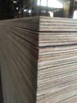Contreplaqué Commercial - Vend Contreplaqué Commercial Eucalyptus 2.5/2.7/4.0/4.6 mm Vietnam
