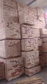 整边材, 榉木