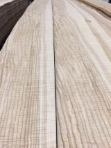 Natural Veneer - Ash  Flat Cut, Plain Natural Veneer Spain
