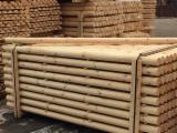 Softwood  Logs For Sale - Producing machine-rounded poles
