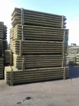 Softwood  Logs - Machine-rounded poles
