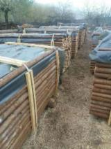Softwood  Logs For Sale - Spruce  35-80 mm -- Cylindrical Trimmed Round Wood Romania