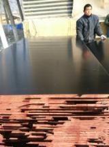 Compra Y Venta B2B De Contrachapado - Regístrase A La Red De Fordaq - Venta Contrachapado Con Film Marron 21 mm China