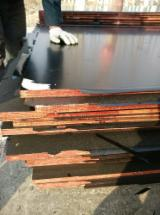 20 mm Film Faced Plywood AA Grade WBP Glue