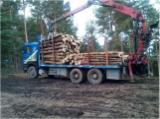 Romania Forest & Harvesting Equipment - Used Man 2002 Longlog Truck Romania