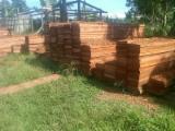 Laubschnittholz, Besäumtes Holz, Hobelware  Zu Verkaufen - Sapelli