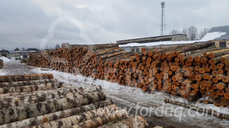 Looking-for-experienced-Purchasing-Agent-of-BIRCH-VENEER-LOGS-in