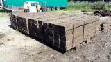 Nadelschnittholz, Besäumtes Holz Gesuche - Balken, Kiefer  - Rotholz