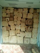 森林和原木 - 硬木原木