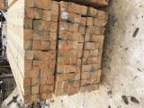 Finden Sie Hunderte Pelletanbieter Auf Fordaq - Nadelholz , 100 - 100 m3 pro Monat