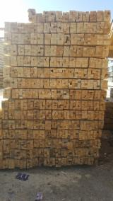 Softwood  Sawn Timber - Lumber - 25-50 mm Fresh Sawn Fir/Spruce from Romania
