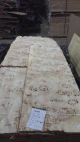 Rotary Cut Veneer for sale. Wholesale Rotary Cut Veneer exporters - MAPPA BURL
