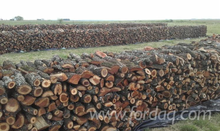 vend grumes pour bois de chauffage acacia sud america uruguay
