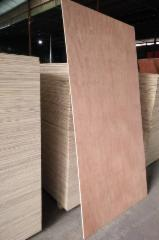 Plywood - Sell Natural Sapelli plywood