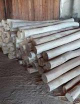 Hardwood  Logs - 10-22 cm Acacia Construction Round Beams Romania