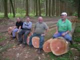 Bosques y Troncos - Venta Troncos Para Aserrar Pino Douglas  PEFC Francia Normandie Sud Alençon Forêt D'Ecouves (Orne)