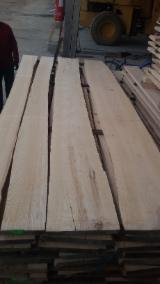 Hardwood  Unedged Timber - Flitches - Boules - Ash unedged lumber, 20+ mm