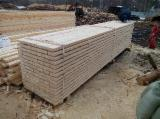 Softwood  Sawn Timber - Lumber - 25-100 mm Fresh Sawn Spruce/Pine Planks (boards)  Lithuania