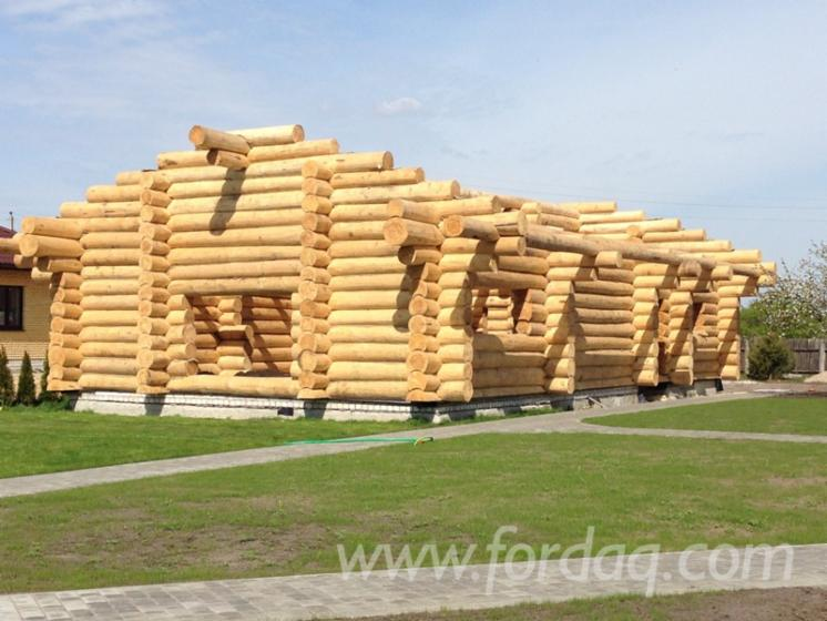 Wooden-Houses-Pine----Scots-Pine-from