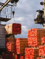 Romania Sawn Timber - Beech timber lightly steamed and kiln dried