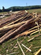 Ogrevno Drvo - Drvni Ostatci - Jela  Okrajci/Završeci Rumunija