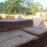 Plywood For Sale - High sale natural Acacia core veneer